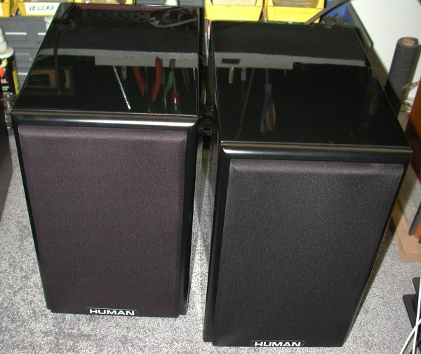 A pair of HUMAN 61 speakers