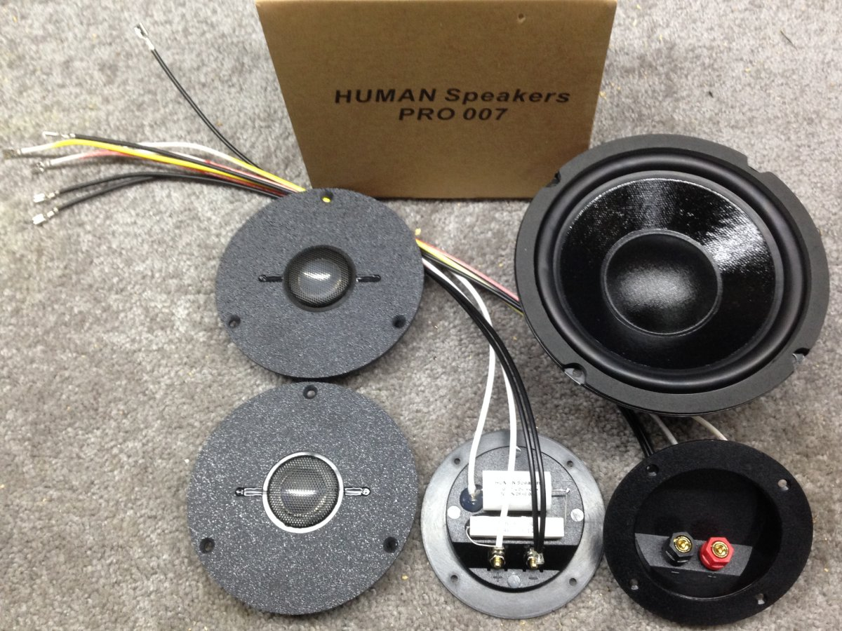 HUMAN K-61E for a pair of EPI 50 speakers